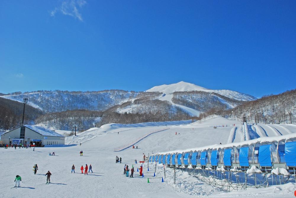 Niseko-Skifahren